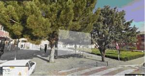 Pino plaza Sierra de Izaga